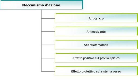 Schema di classificazione dei nutraceutici in funzione del meccanismo d'azione