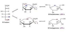 Forme isomeriche del fruttosio