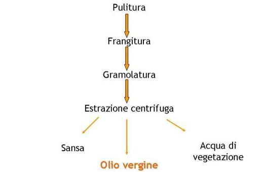 Schema di estrazione dell'olio per centrifugazione