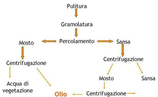 Schema di estrazione dell'olio mediante filtrazione selettiva (metodo Sinolea)