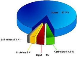 Composizione media del latte vaccino