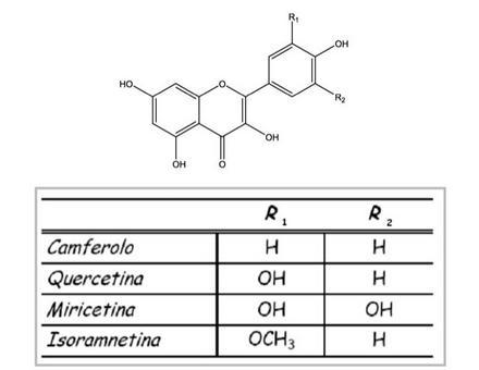 Schema delle strutture dei diversi flavonoli presenti nell'uva