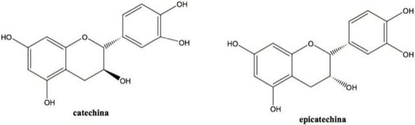 Struttura dei flavan-3-oli  presenti nell'uva