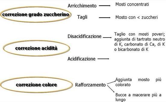 Schema delle principali correzioni della composizione del mosto