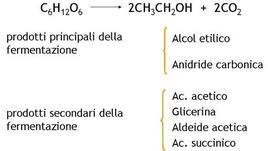 Schema dei principali prodotti della fermentazione alcolica nel vino