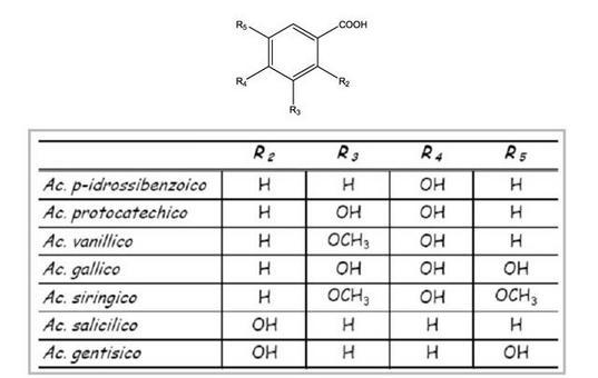 Schema delle strutture dei diversi acidi benzoici presenti nell'uva