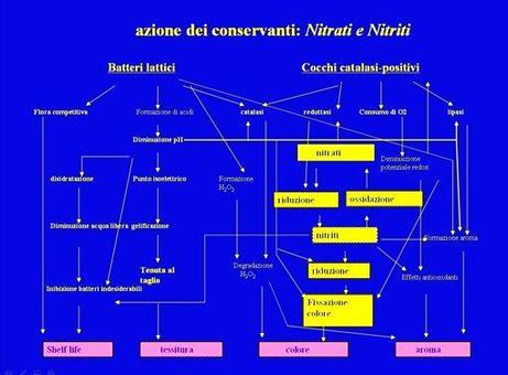 Grafico dell'influenza dei nitriti e nitrati su shelf life, tessitura, colore e aroma delle carni.