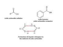 Struttura e formazione di legami a idrogeno negli acidi carbossilici