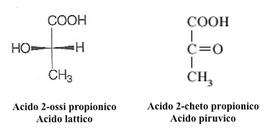 Acidi organici con un gruppo funzionale aggiuntivo. Due acidi biologicamente importanti.