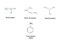 Struttura e nomenclatura di alcune ammine
