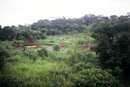 Villaggio, Camerun.