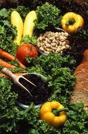Alimenti. Fonte: Wikipedia.