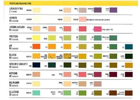 Esame chimico: tabella di confronto per lettura del test rapido.