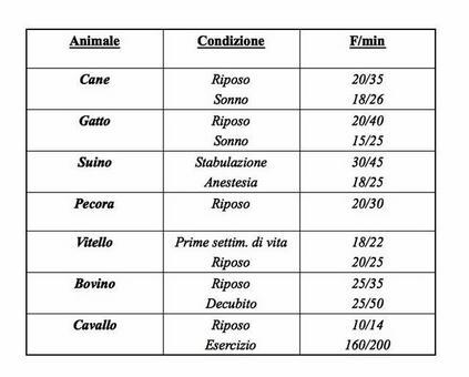 Valori di Frequenza respiratoria in alcune specie domestiche.