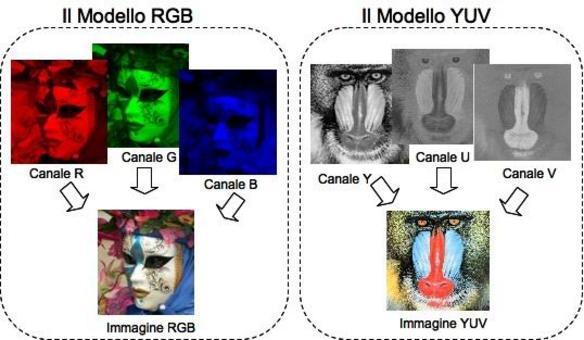 I modelli RGB e YUV.
