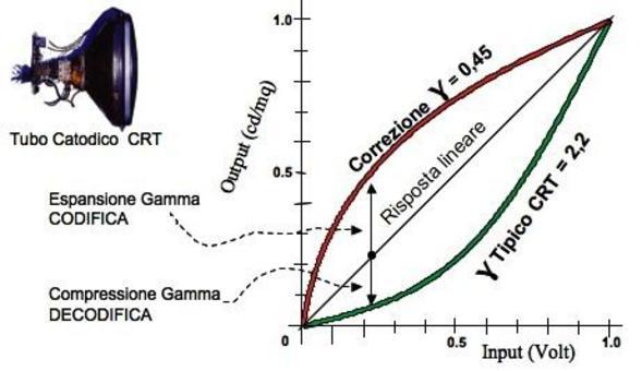 Correzione Gamma: curva di Codifica e Decodifica.