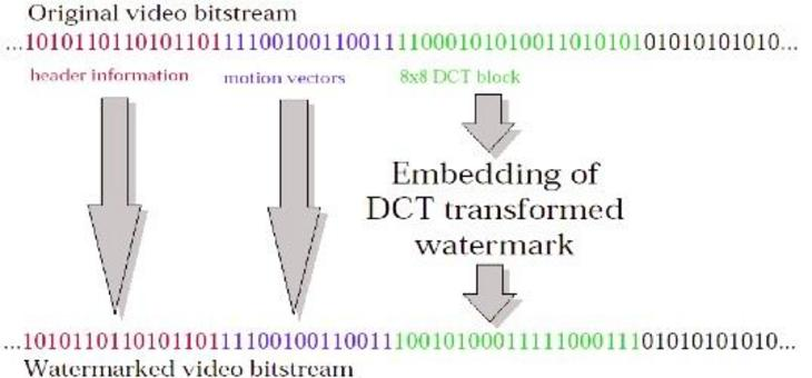 WaterMark di video compresso.