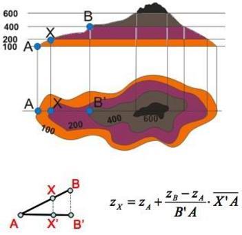 Esempio di interpolazione lineare da isolinea.