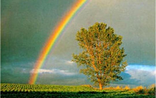 L'arcobaleno è un effetto dovuto al fenomeno di rifrazione delle particelle d'acqua sospese nell'atmosfera