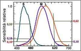 Stimoli prodotti da radiazioni monocromatiche