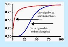 Cinetica di un enzima regolato, la curva sigmoide degli enzimi regolati