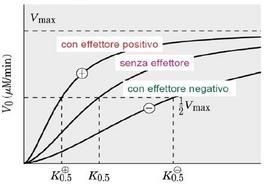 La curva sigmoide in presenza di effettore positivo o negativo