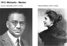 Leonor Michaelis e Maud Menten. Fonte: Scientia