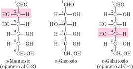 Fig. 5.2.2: gli epimeri del D-Glucosio cioè il D-Mannosio e il D-Galattosio