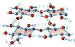 Fig. 5.8.2: struttura della cellulosa