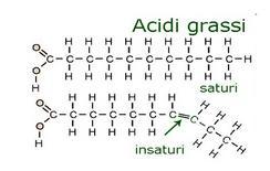Acido grasso saturo ed insaturo