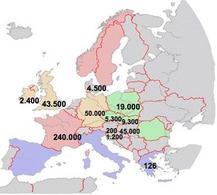 Carne d'anatra in Europa nel 2004 (dati FAO)