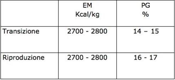 Consumo individuale di alimento: 160 – 180 g/d