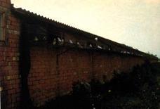 Esterno di un capannone con voliere a balcone