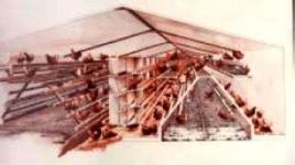 Immagine di un perchery dove si può notare la distribuzione delle ovaiole