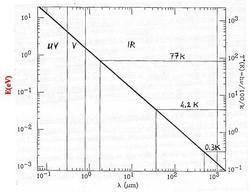 Il rumore termico del rivelatore