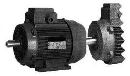 VST Motor