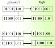 Crossover – per ogni coppia viene applicato con probabilità Pc