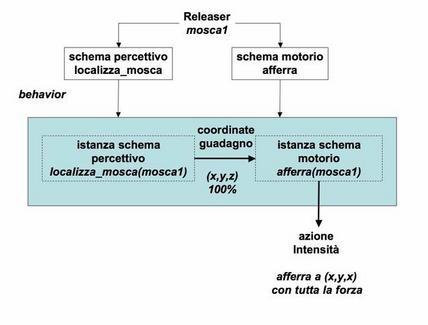 Due istanze del behavior del sistema visivo della rana