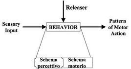 Behavior secondo lo Schema Theory