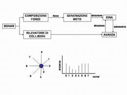 Architettura a sussunzione: livello 0 e esempio di diagrammi polare e lineare delle  letture sonar