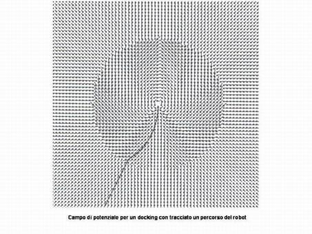 Foto riprodotte dal testo di R.R. Murphy di MIT press.