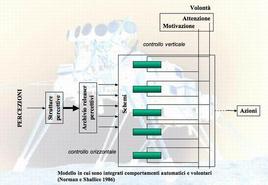 Modello in cui sono integrati comportamenti automatici e volontari (Norman e Shallice 1986)