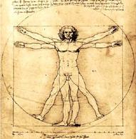 Leonardo da Vinci, L'uomo vitruviano (1490), Galleria Accademia di Venezia. Immagine da: Wikipedia