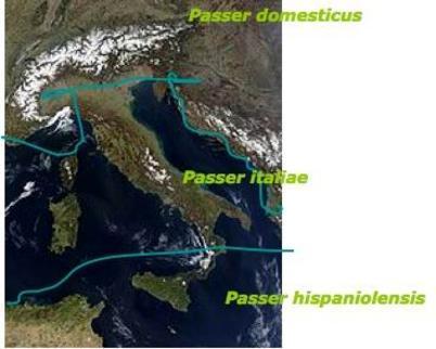 Fonte Wikipedia.