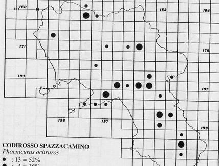 Metodo del reticolo – Tratto da Fraissinet M. e Kalby M. (1989) Atlante degli uccelli nidificanti in Campania, Reg. Campania ed.