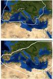 Corotipo Europeo (in alto) e Turanico-Mediterraneo (in basso). Fonte  Wikipedia.