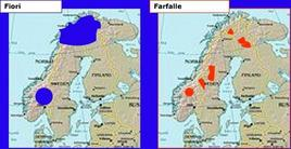 Taxa diversi coincidenti, condizionati da nunatack. Modificata da  Wikipedia .