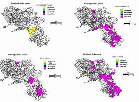 Per le specie emergenti occorre elaborare cartine di distribuzione relative al territorio oggetto di studio. Cartine tratte da Milone M., Caliendo M. F.et al.