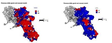 Per ciascuna specie occorre anche elaborare la mappa di presenza /assenza sul territorio oggetto di studio. Cartine tratte da Milone M., Caliendo M. F.et al.
