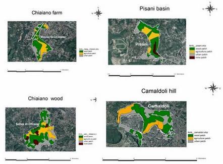 Composizione di habitat faunistico in ciascuna unità territoriale dell'area di indagine.